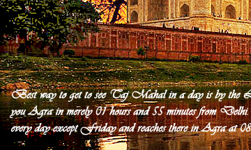Luxury Tajmahal Tours